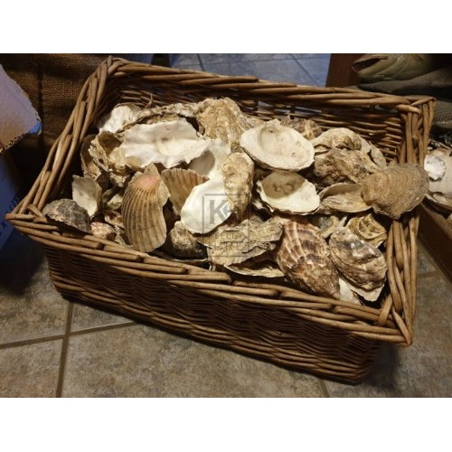 Oyster seller basket with shells