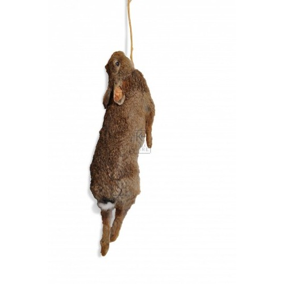 Hanging Rabbit