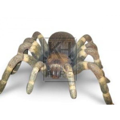 Tarantula 3ft