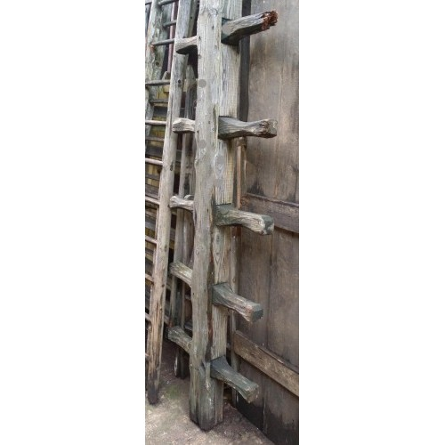Thick wood barn ladder