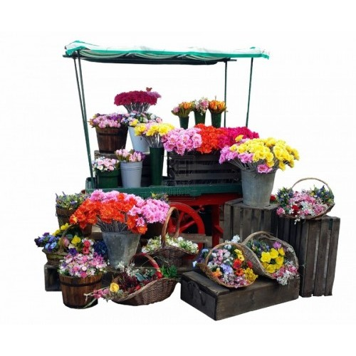 Flower stall dressing NOT STALL