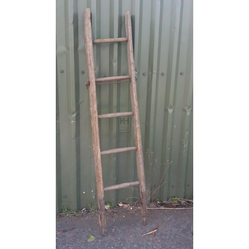 Short ladder with iron ends