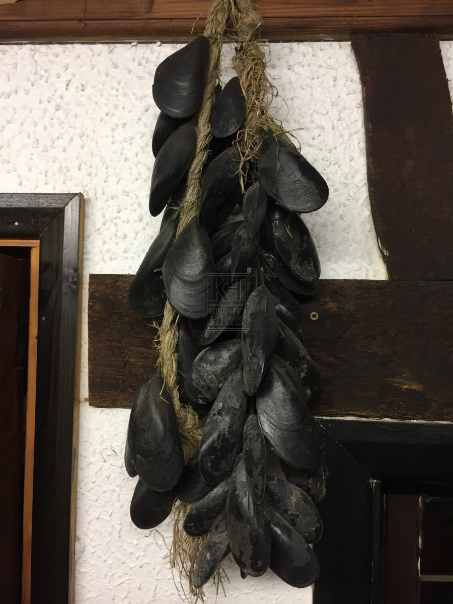 Mussels On A Line