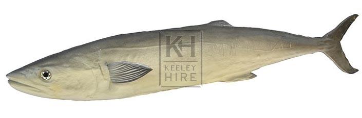 Long grey rubber fish