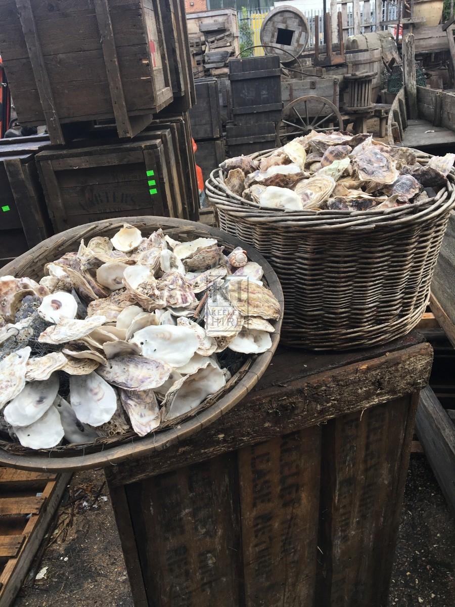 Large Basket Of Oyster Shells