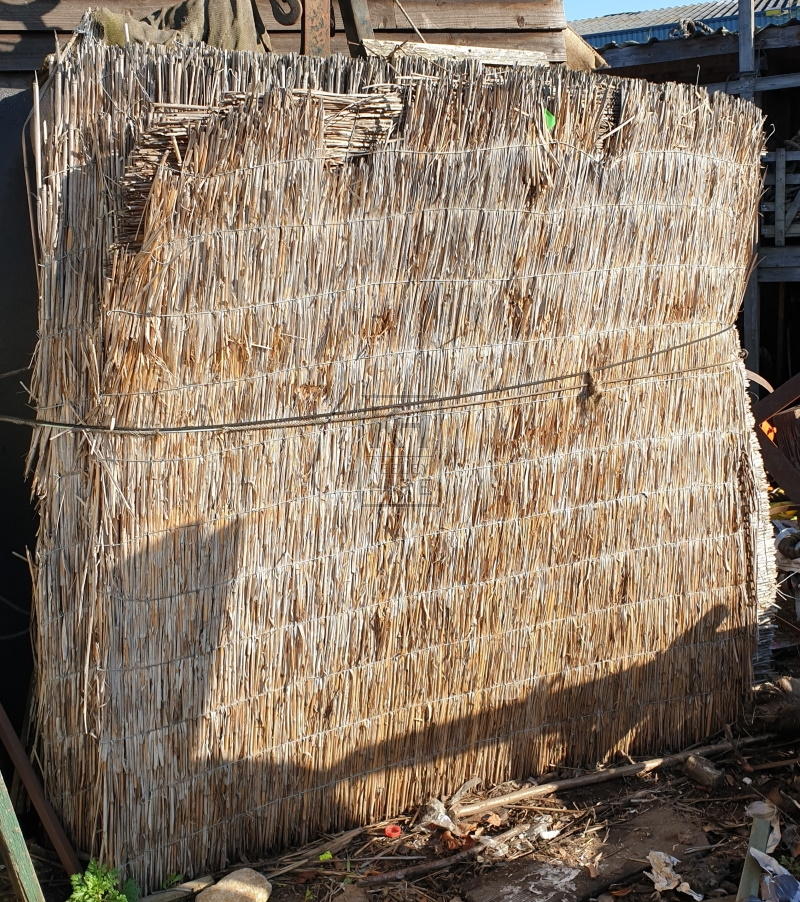 Large reed screen
