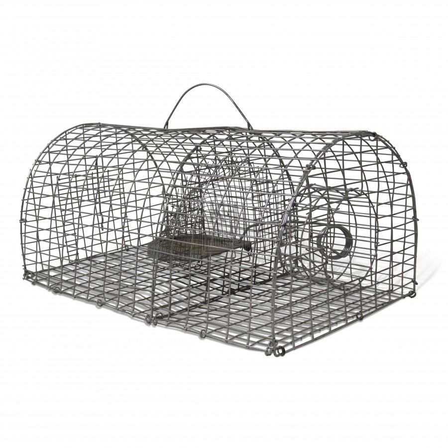 Wire Cage Trap