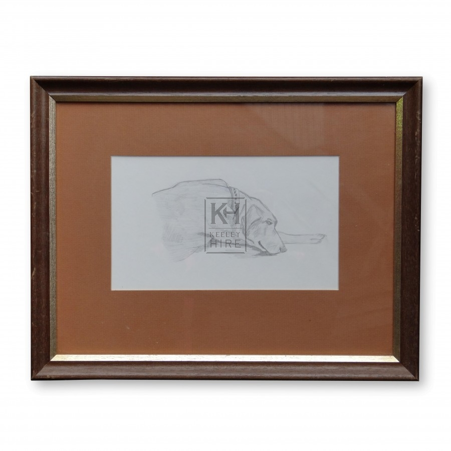 Framed Sketch of a Dog