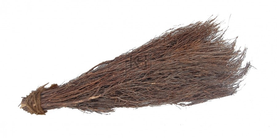 Broom Brush