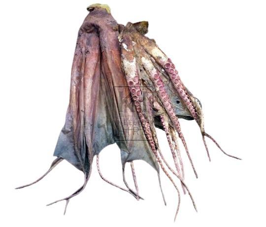 Octopus - rubber