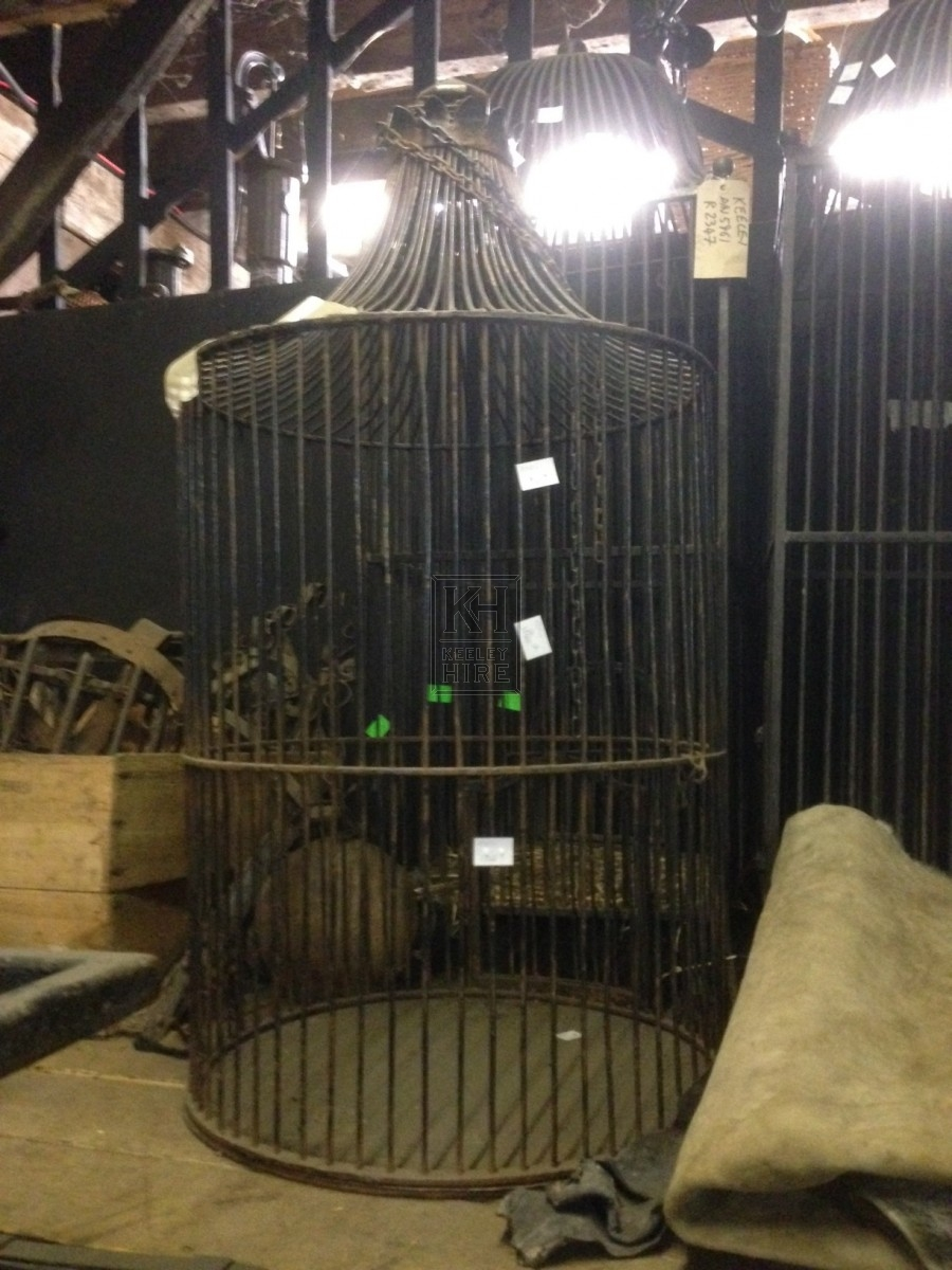 Cylindrical Metal Bird Cage