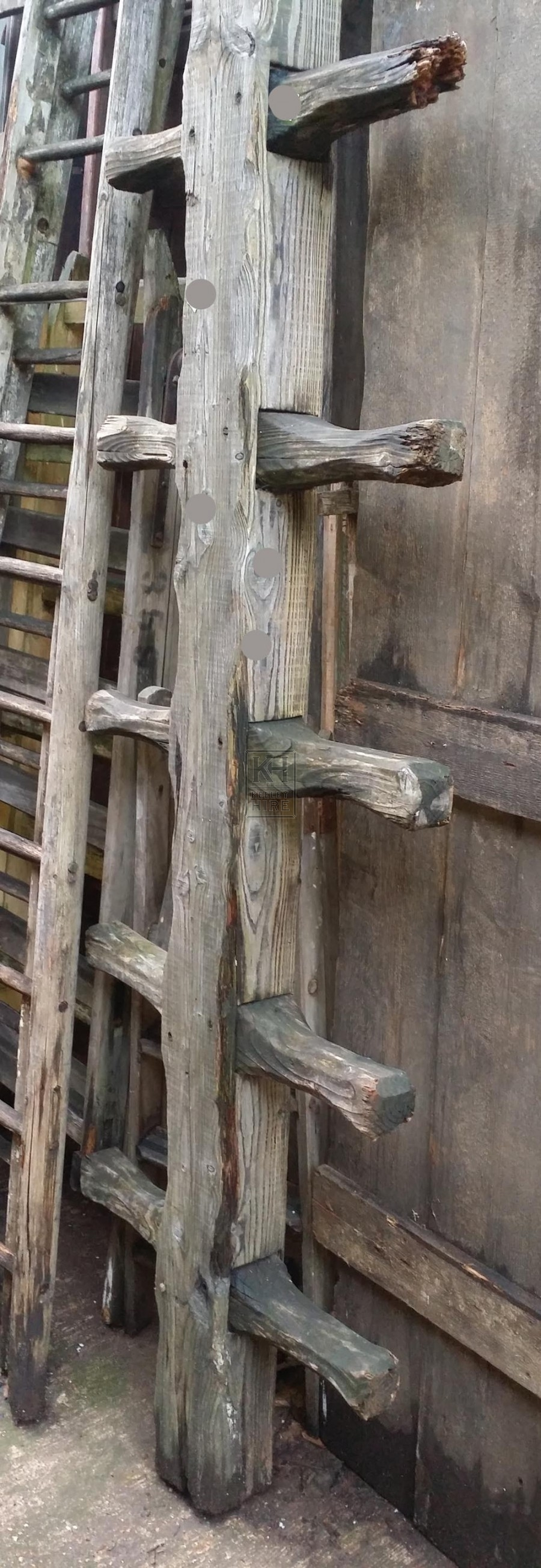 Ladders And Steps Prop Hire » Thick wood barn ladder ...