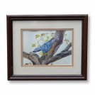 Nuthatch Bird Painting
