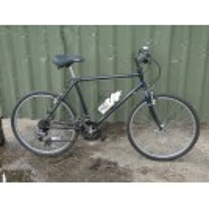 Metallic Raleigh Mountain Bicycle
