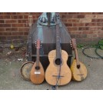 Guitars Banjos Ukuleles & Lutes