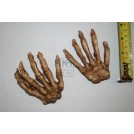 Replica skeleton hands of a child