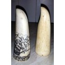 Small scrimshaw