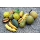 Selection of tropical fruit - per item
