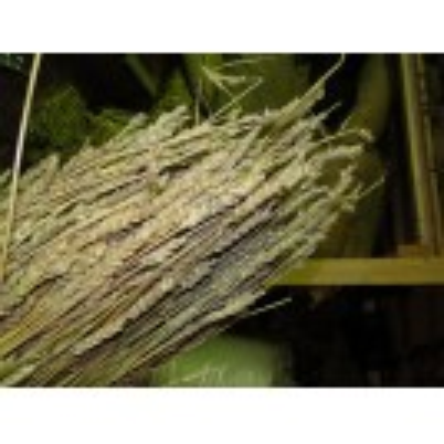 Straw Bundle