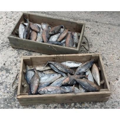 Wood fish crates