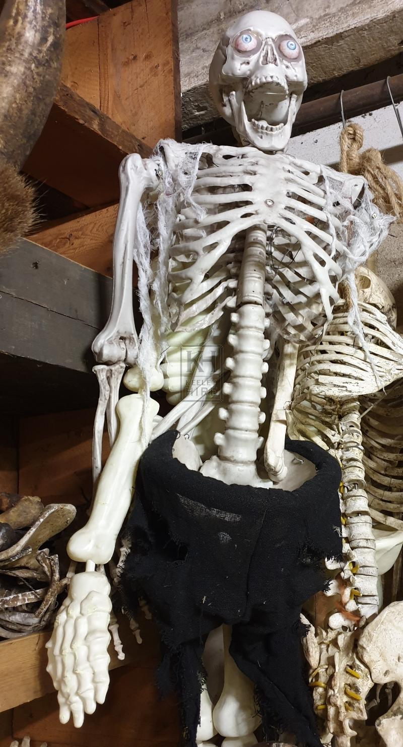 Skeleton with eyes