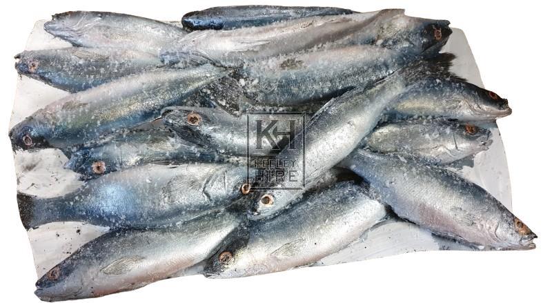 Fish mould - silver
