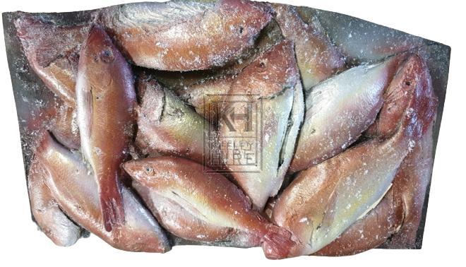 Fish mould - orange