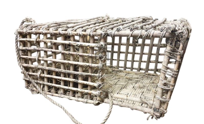 Large woven rustic cage