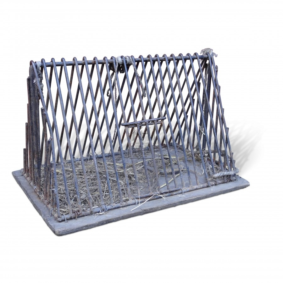 Pointed iron cage