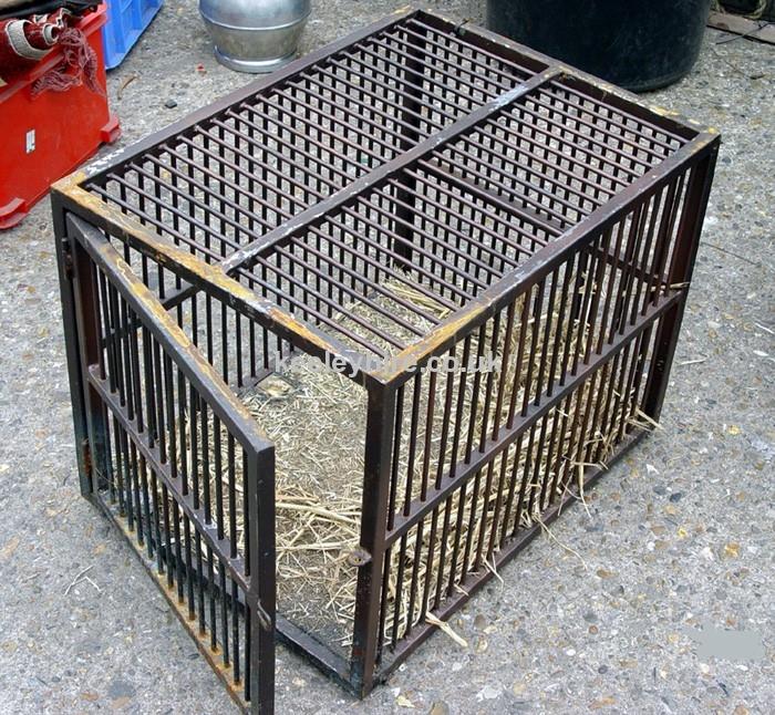Rectangular Iron cage