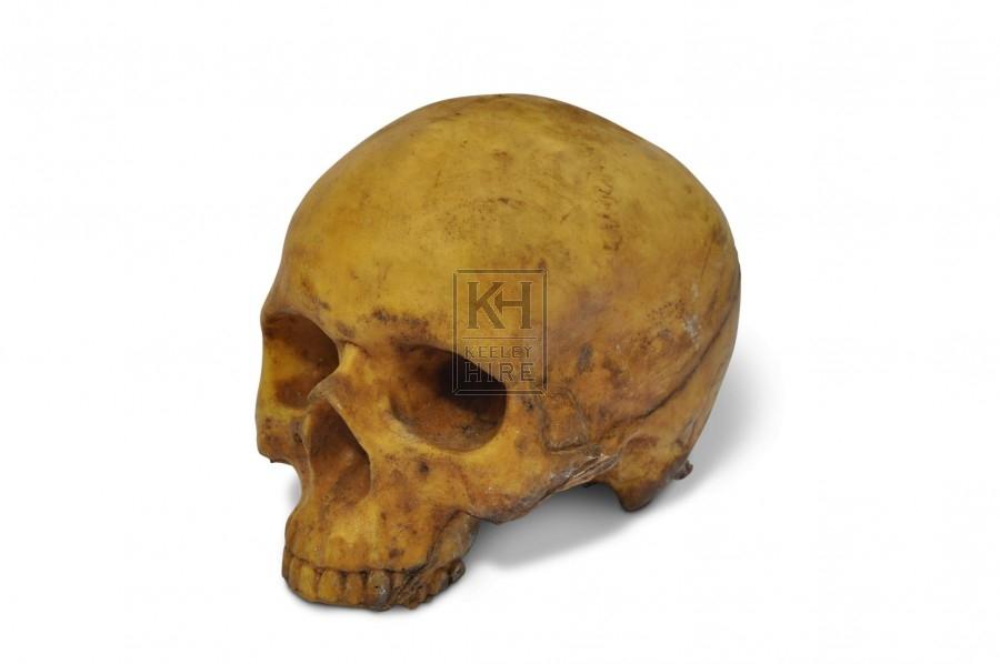 Skull - Rubber