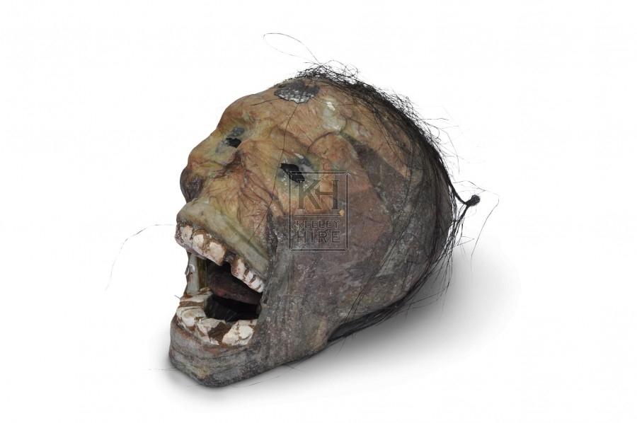 Skull - Decaying