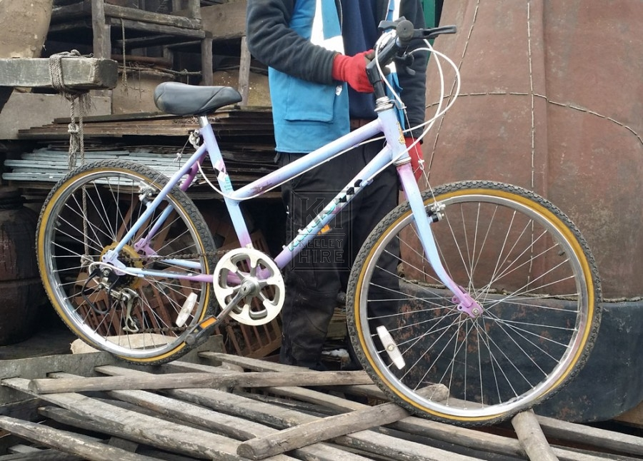 Ladies Lilac Mountain Bicycle